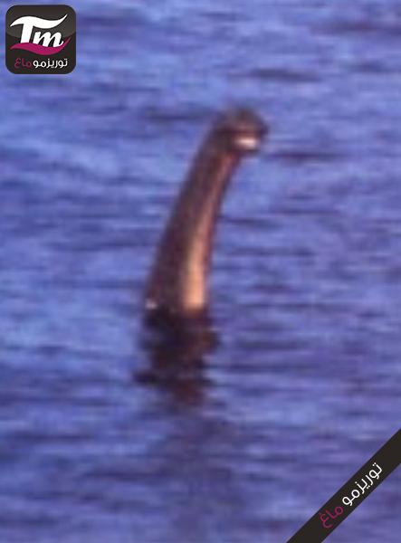 Loch_Ness_Muppet